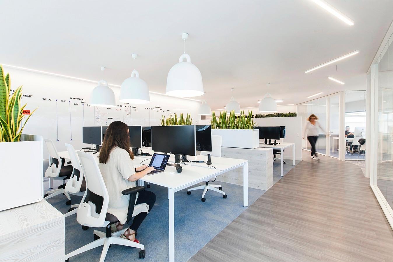 oficinas_decoraciondeoficinas_plantasparaoficinas_ plantasartificialesparaoficinas